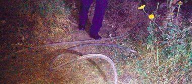Uniformados hallan toma clandestina y automotor en Tepeji, últimamente
