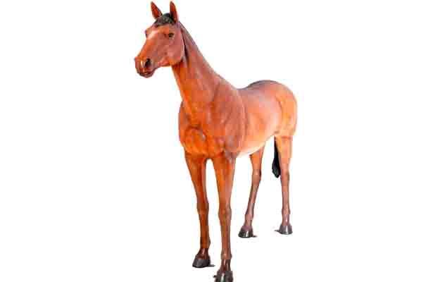 Siempre se ha vendido carne de caballo