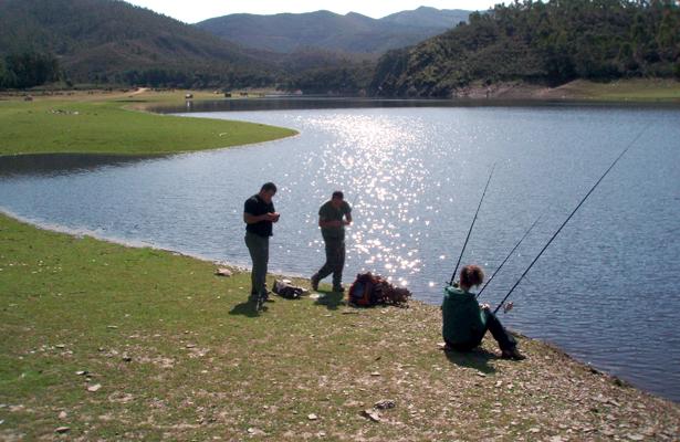 Hidalgo, segundo en producción pesquera