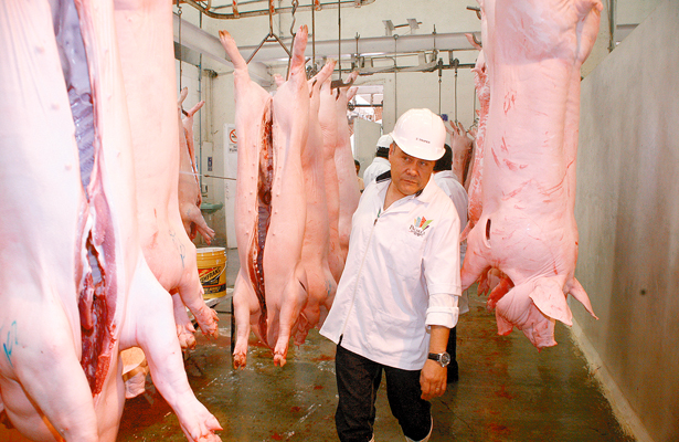 Aumentará consumo  de carne de cerdo