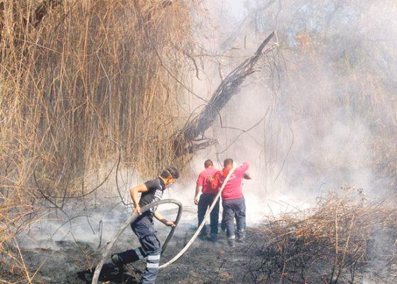 Continúa racha de incendios en toda la región