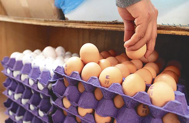 Incrementaron el precio del huevo
