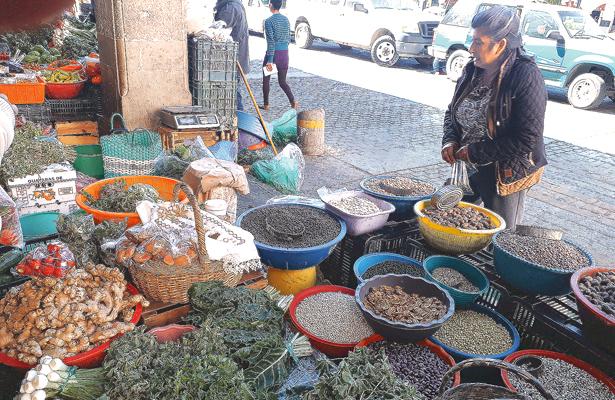 Lleva dinero a casa con  la venta de hortalizas