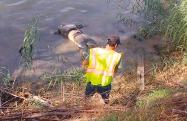 Se ahogó en su intento por cruzar el Río Bravo