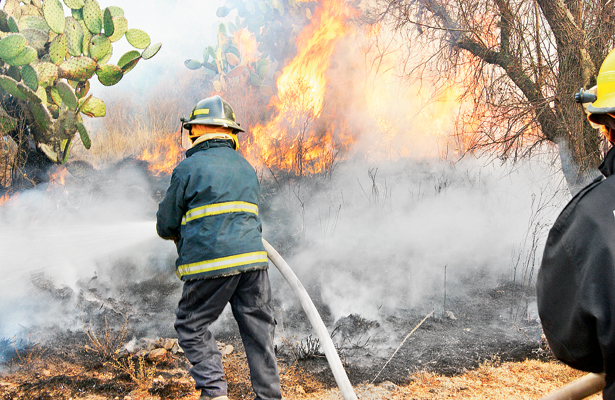 Hasta ayer, 52 incendios forestales en 20 municipios de Hidalgo