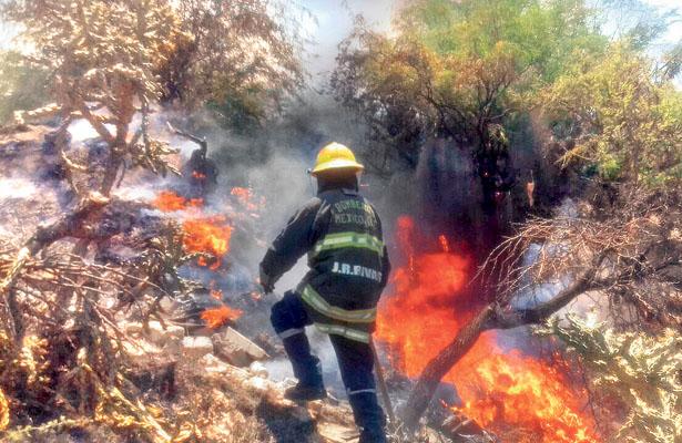 Protección Civil atiende incendios de pastizales