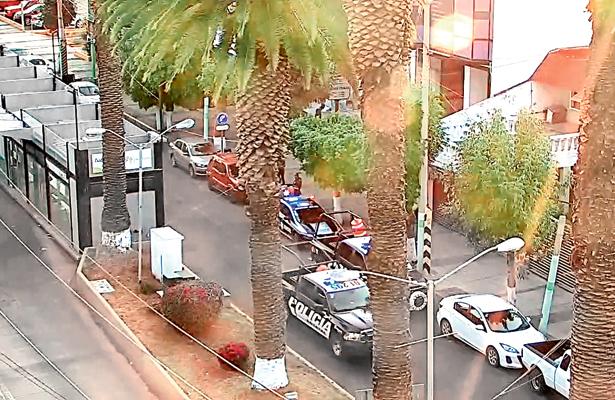 Con cámaras detectaron y arrestaron a ratoncito