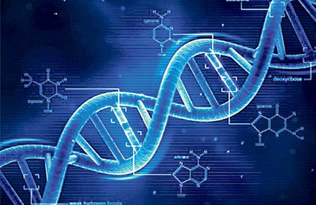A 65 años del descubrimiento de la estructura del DNA