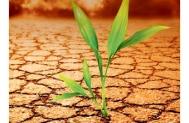 México, ejemplo en AL en acciones para mitigar el cambio climático