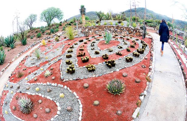 En Cubitos, el pulmón verde de Pachuca