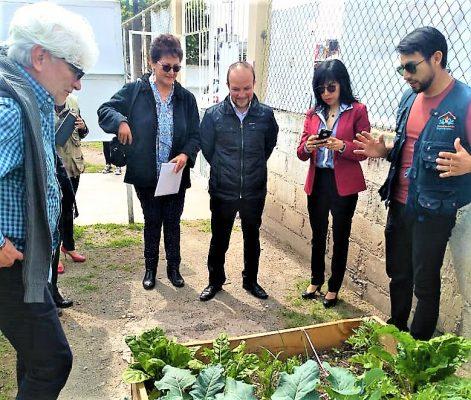 Escuelas verdes en  Mineral de la Reforma
