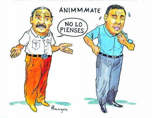 Hoy en el Cartón de Salazar / ANIMMMATE