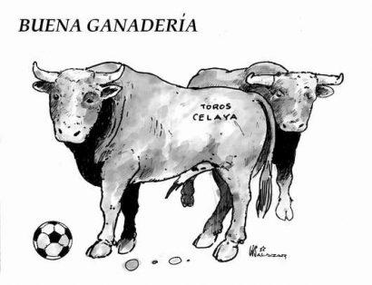 Hoy en el Cartón de Salazar / BUENA GANADERÍA
