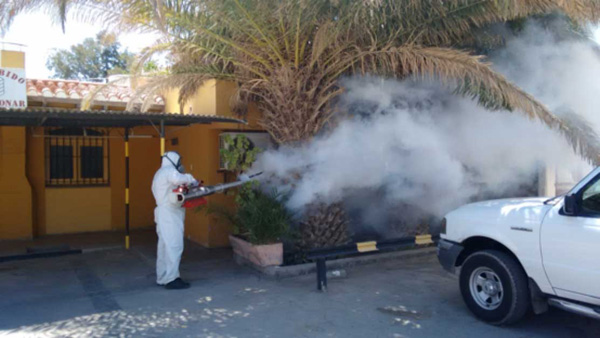 Nebulizan la zona urbana