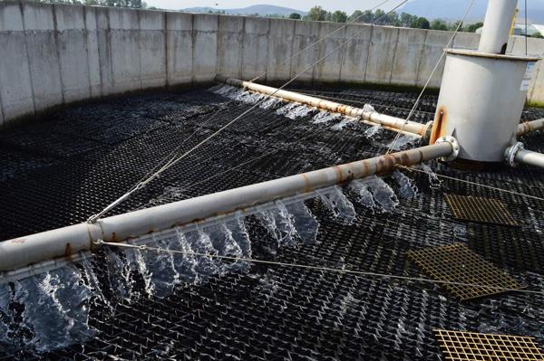 Es aprovechada el agua de planta tratadora para riego