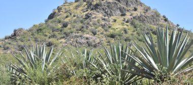 """Íconos de Irapuato: Cerro del """"Piloncillo"""", el vigía de Irapuato"""