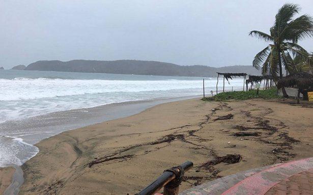Tormenta Bud se dirige hacia Sonora; podría degradarse a depresión tropical