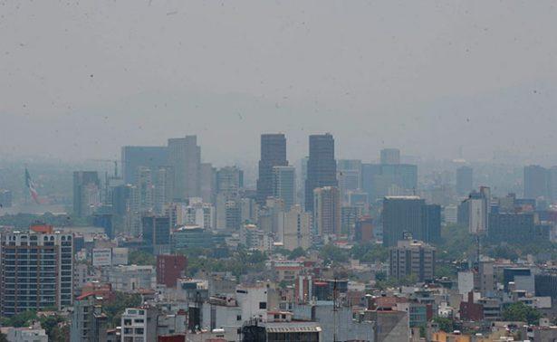 Pronostican 60 mil muertes para el 2030 por contaminación ambiental