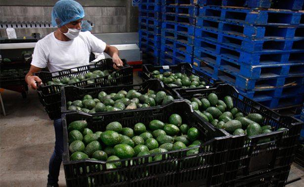 México recupera la confianza y tranquilidad de los inversionistas: ProMéxico
