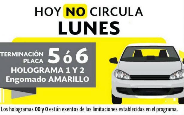 ¡Recuerda! Automóviles con engomado amarillo y placas 5 y 6 no circulan este lunes