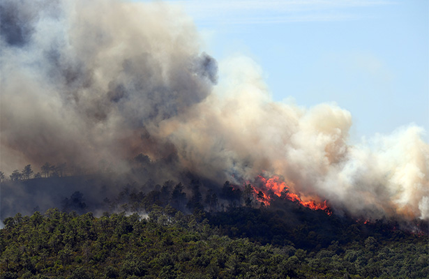 Desalojan a diez mil personas en Francia por incendio forestal