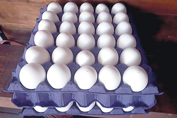 Va el huevo en aumento
