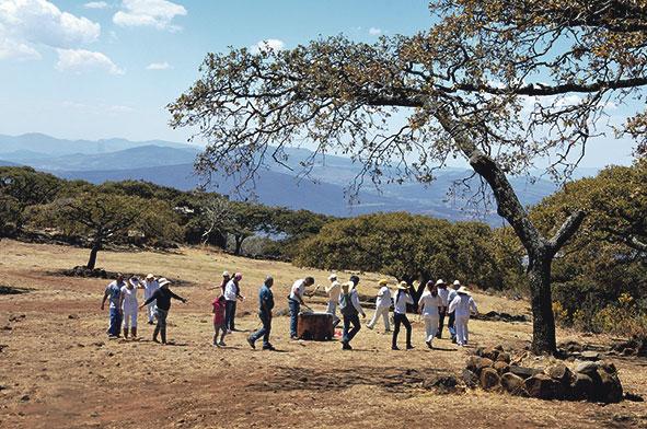 Promover áreas naturales traería más turismo: FOR