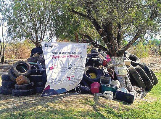 Eliminan en Celaya 53 toneladas de cacharros