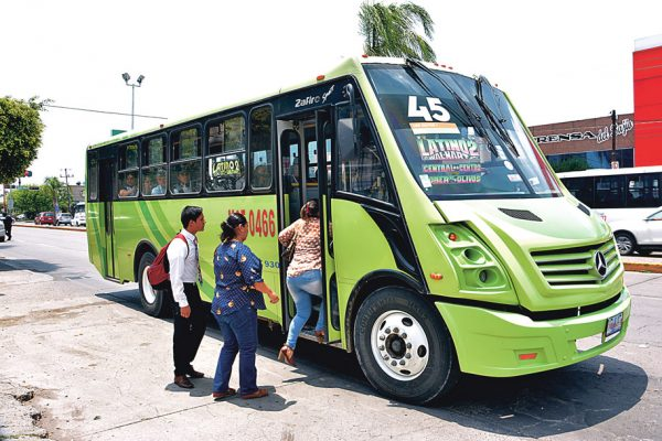 Aprenderán sobre el camino rutas de transporte: usuarios