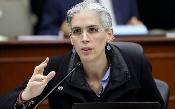 Ley de propaganda se aplicaría en campañas: Pamela San Martín