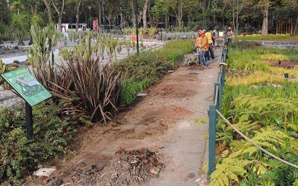 El Jardín Botánico de Chapultepec, sometido a una intensa remodelación