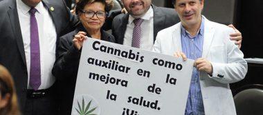 Diputados aprueban marihuana medicinal; la turnan al Ejecutivo