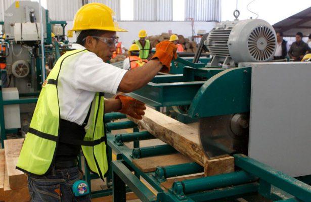 12 mil 517 empleos formales han sido generados este año