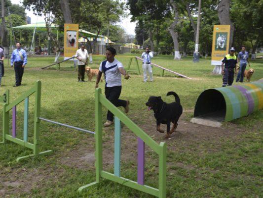 Antes de que concluya el año podría estar listo el segundo Parque para Perros