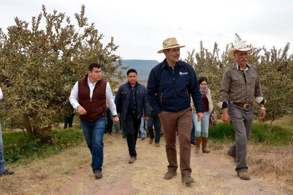 Apoyo integral a productores de cultivos siniestrados: MOS