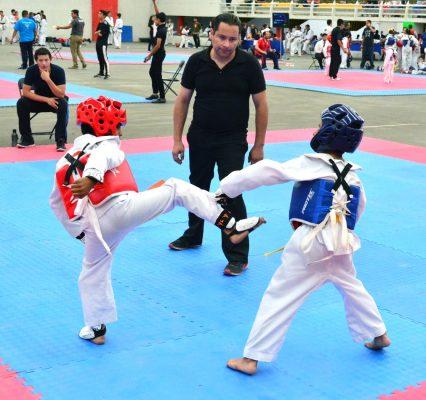 Seminario de Taekwondo este fin de semana