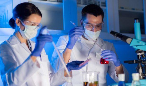 Destaca el estado en ciencia y tecnología