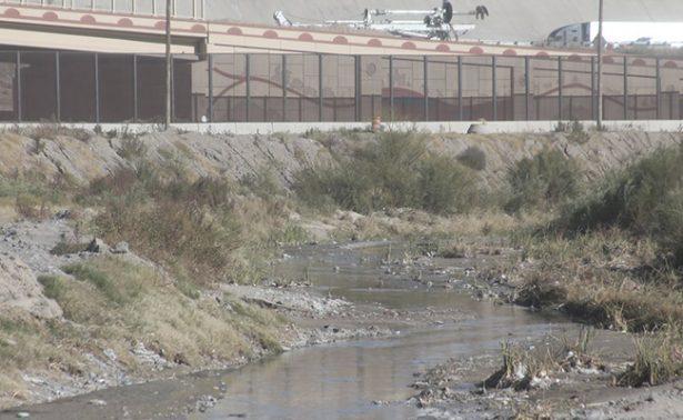Mata muro fronterizo flora, fauna y el sueño americano