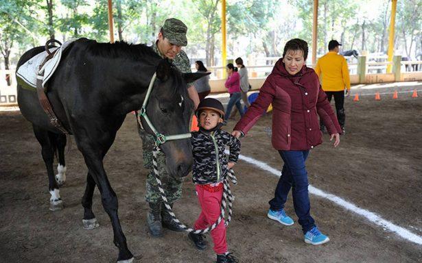 Equinoterapia tratamiento eficaz para niños con discapacidad