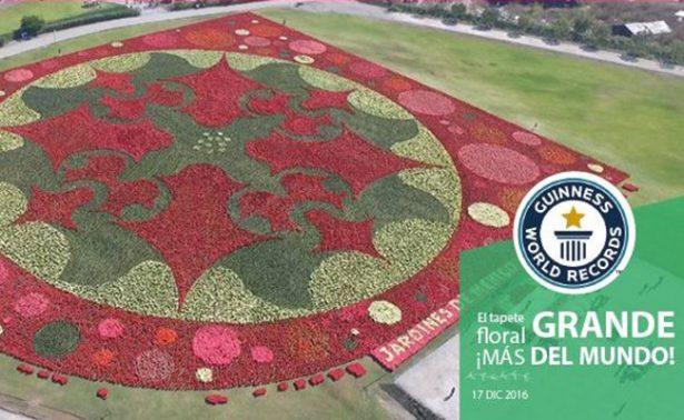 Morelos gana récord Guiness por tapete floral más grande del mundo