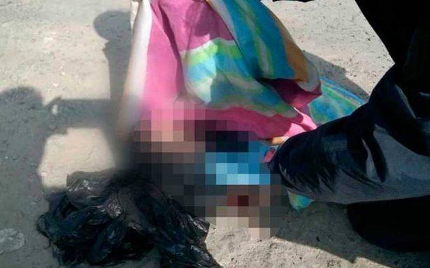 Hallan cuerpo de una bebé que era devorada por perros en Naucalpan
