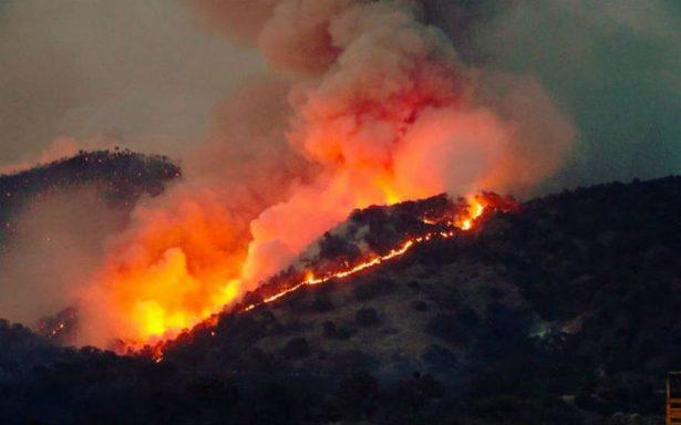 Brigadas combaten incendio forestal activo en el Bosque La Primavera