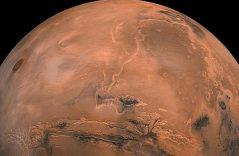 ¡Descubren microorganismos que pueden ayudar a crear vida en Marte!