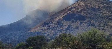 Incendios devastan bosques y pastizales en Chihuahua