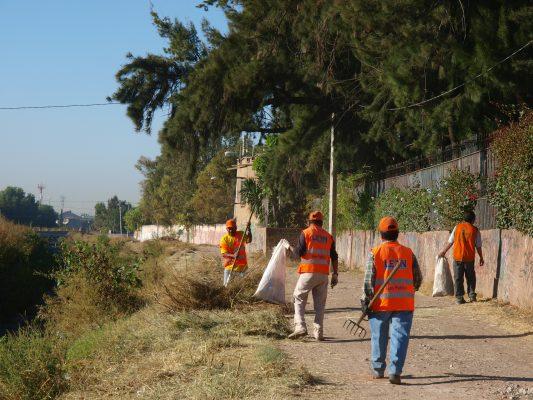 Aplica Sapal 12 mdp para limpiar arroyos