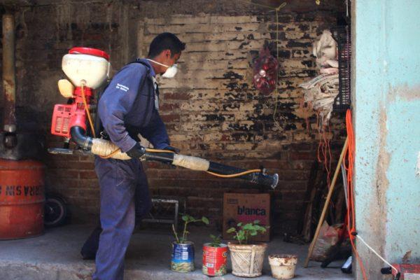 Ataca dengue en la Zona Centro