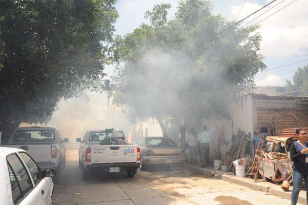 Alcanza los 1,176 casos el dengue en el estado