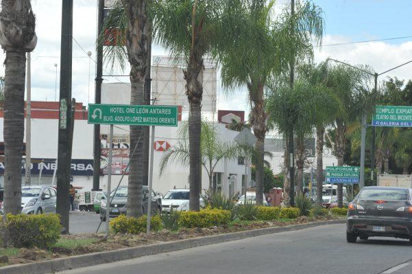 Censan árboles en el municipio
