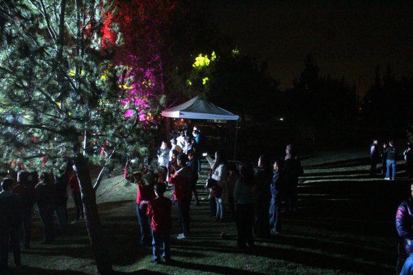 Llegan las luces navideñas a Parque Los Cárcamos