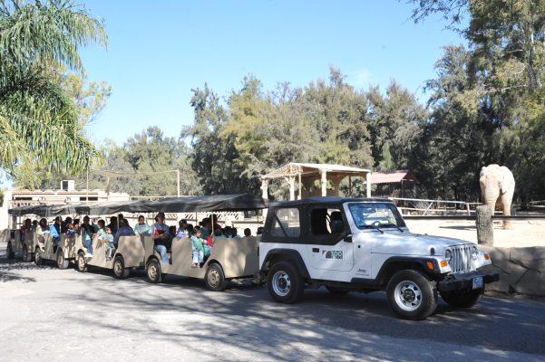 Zoo León registra 560 mil 935 visitantes